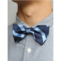 Bow Tie (Blue/Light Blue Strap)
